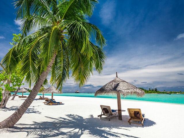 Best Ways to Enjoy Your Beach Vacation